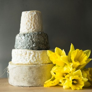 EASTER CHEESES HAVE ARRIVED