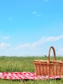 Picnic Sheet With A Basket And Grass And Sunny Skies