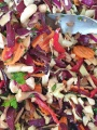 Salad Beetroot 1